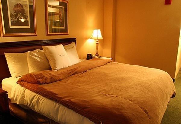 Thiết kế phòng ngủ vừa đủ ánh sáng