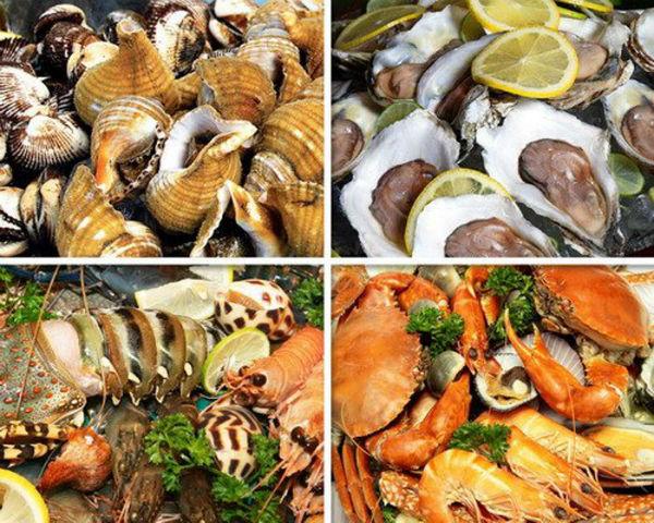 Hải sản là món đồ ăn không thể cưỡng lại được